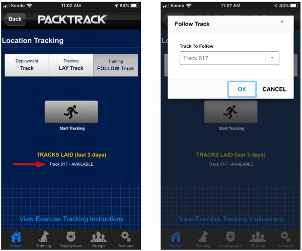Automatically create an event and exercise when tracking
